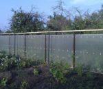 Забор из поликарбоната 9