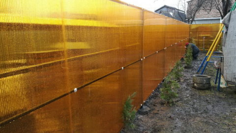 Забор из поликарбоната в СНТ Залив